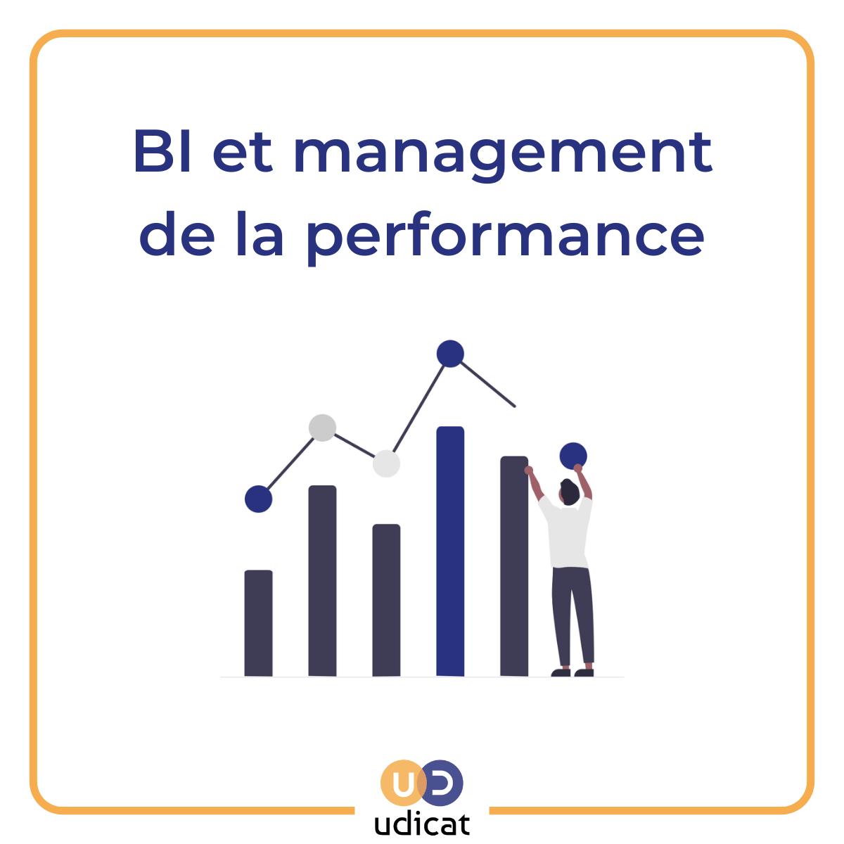Visuel présentation article Business Intelligence et management de la performance